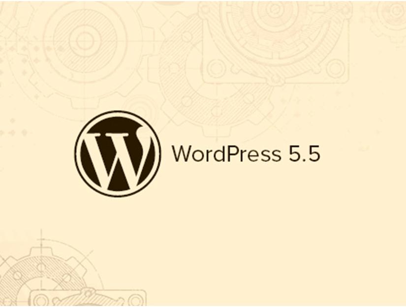 WordPress 5.5 Sürümü Yayınlandı